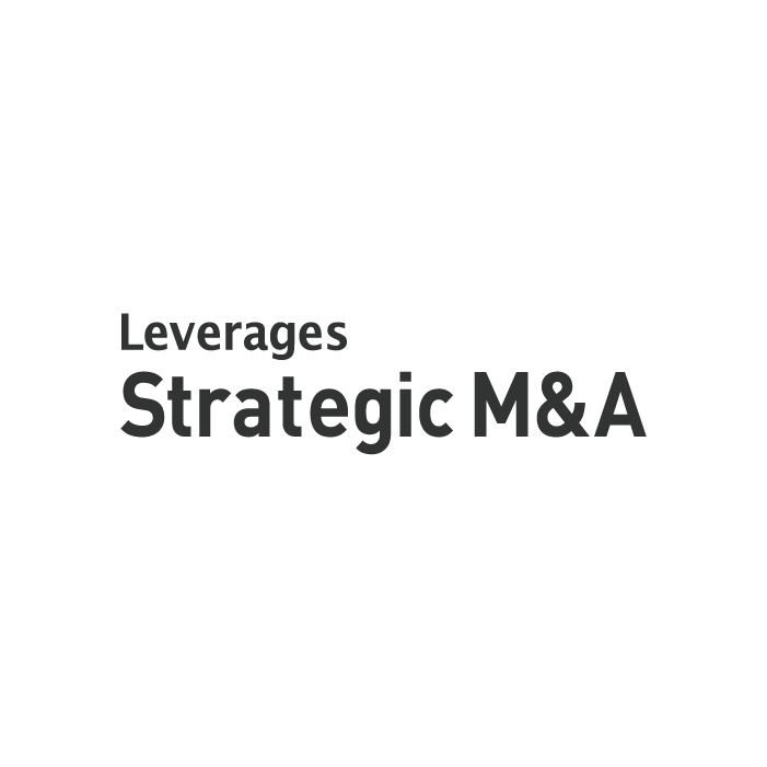 Leverages M&A Advisory Co., Ltd. ロゴ